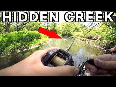 HIDDEN Creek was LOADED with FISH!!!!