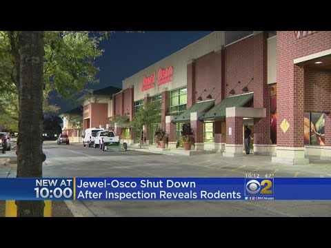 Rodents Found In Jewel-Osco Grocery Store