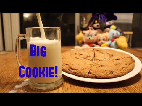 Sonic Chefs - BIG COOKIE!