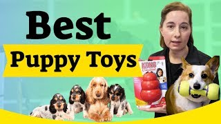 Best Puppy Toys to Keep Them Busy