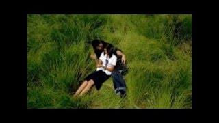 LỜI CHO NGƯỜI TÌNH XA (Hoàng Thanh Tâm) - tiếng hát Thái Châu