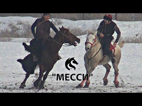 "10 АТТЫ БУЙТАП ОТКОН ""МЕССИ"" / Тулпар KG"
