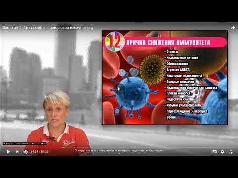 12 причин снижения иммунитета О.Бутакова