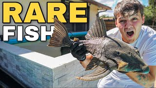 My *NEW* PREHISTORIC FISH for 4000G BackYard POND!! (scary)