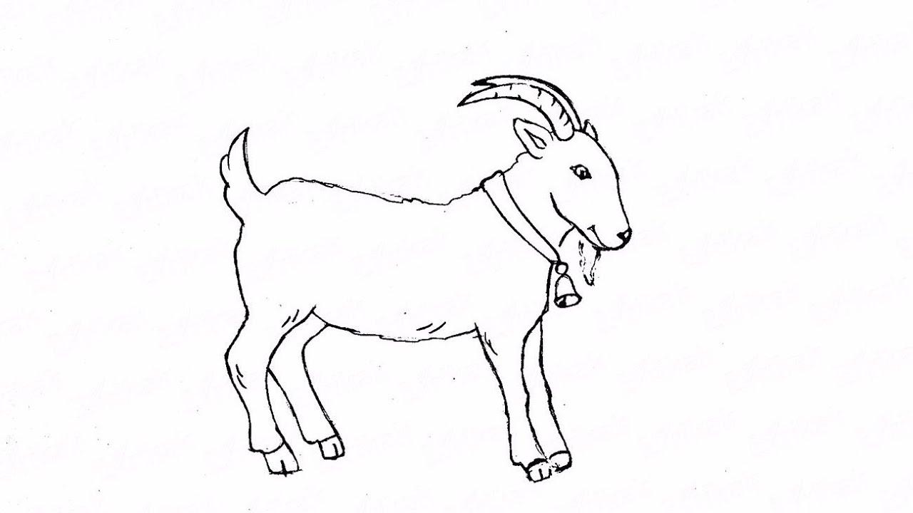 альтернатива картинки как нарисовать козлика позже алексей увлёкся