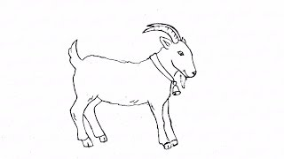 Как карандашом поэтапно нарисовать козла: инструкция от EvriKak