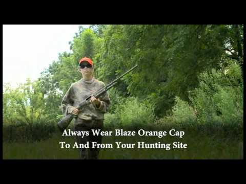Coyote Hunting in Iowa, Laws, Regulations, Season ...