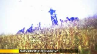 Сюжет о клипе ЛУННЫЕ КОТЫ