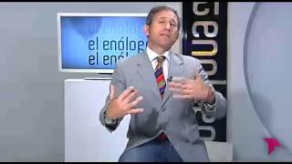 El EnÓlogo  Programa 30. Vinos Y Famosos