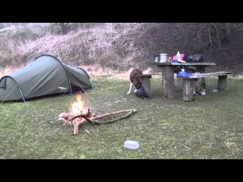 Siberian Husky´s tent trip Feb. 2012