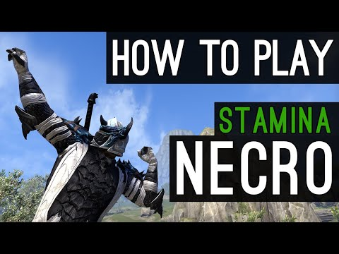 Stamina Necromancer How to Play Beginners Guide - Elsweyr ESO