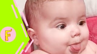 Hilarious Chubby Baby Make You Laugh Out Loud  Fun and Cute