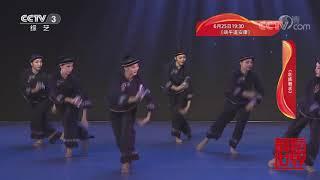 [舞蹈世界]舞蹈《壮族舞求》 表演:广西艺术学院舞蹈学院 2016级表演与教育专业女班| CCTV综艺