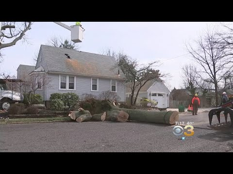 New Jersey Crews, Homeowners Deal With Aftermath Of Powerful Nor'easter