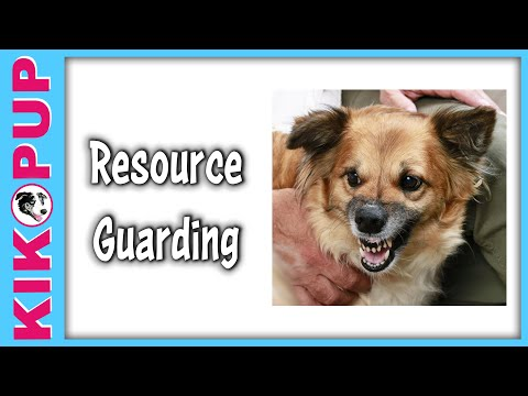 Resource Guarding Training