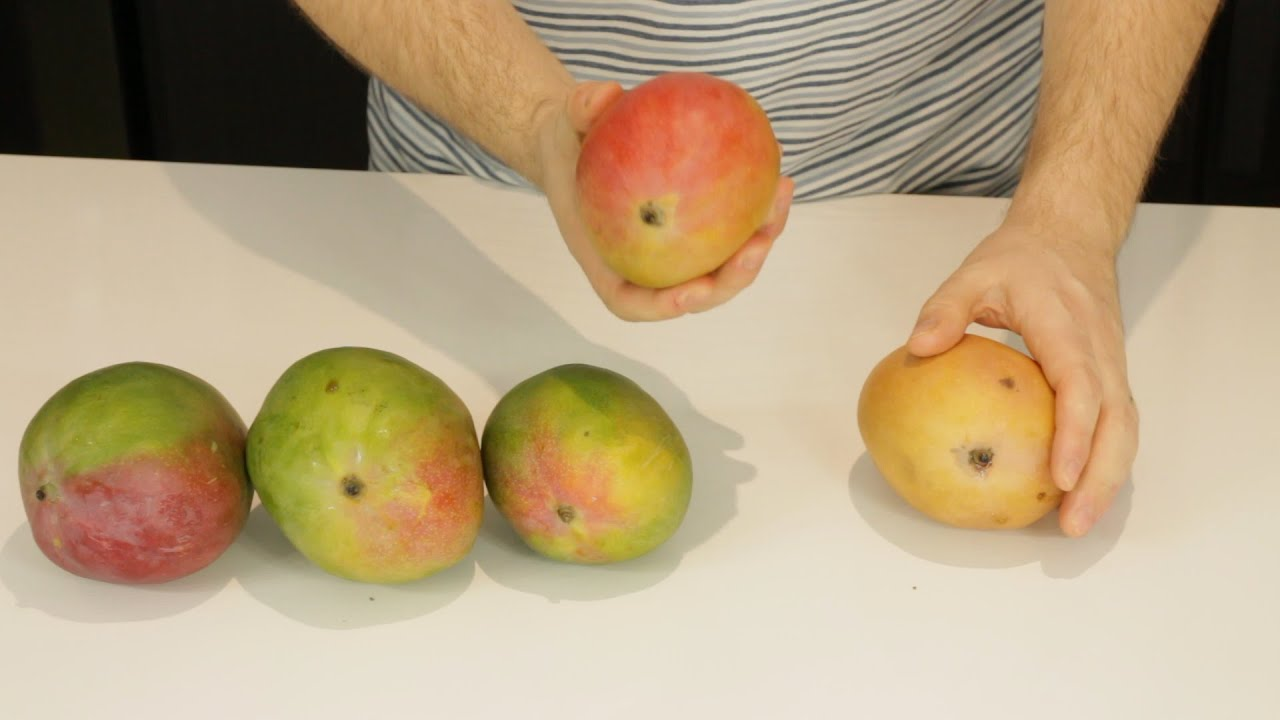 how to tell if a mango is ripe youtube