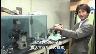 北海道大学の全学教育科目「科学技術の世界」 の一つとして、2012年度前...