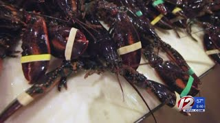 Lobster prices rise, affecting businesses