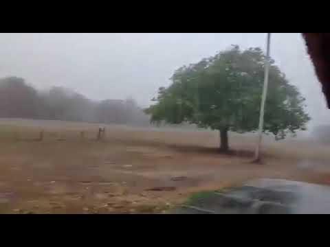 17/10/2020 - Alívio e alegria com a chegada da chuva no Pantanal | METSUL