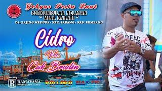 Download Mp3 ● Cidro ●  Cak Brodin ● New Pallapa Bajing Meduro 2019 ●