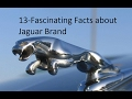 13 Fascinating facts about JAGUAR brand