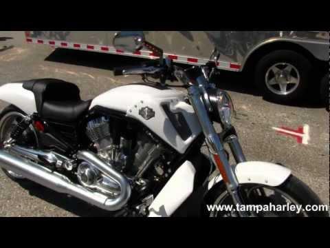 NEW 2013 Harley-Davidson V-Rod Muscle VRSCF