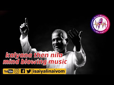 Kalyana thenila | Flute | Bgm | illaiyaraja Flute