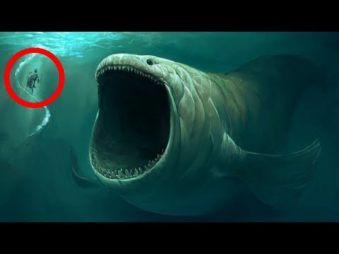 10 BIGGEST Underwater Creatures In The world!