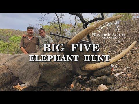 Big Five Elephant Hunt trailer