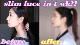 I tried a V shape slim face workout 1 week (smaller face exercise)