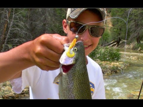 How to catch a trout 24
