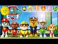 PAW PATROL Cartoon Game Videos for Kids & Children - Paw Patrol On a Roll #14