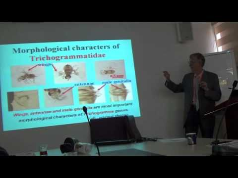 Dr Victor Fursov (pt-2): Trichogrammatidae - Egg-Parasitoids of Pests, Turkiye