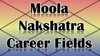 Moola Nakshatra Career/Professions (Vedic Astrology)