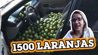 ENCHI O CARRO DA FU COM 1500 LARANJAS