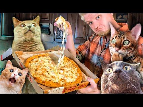 Ямм Пицца. ОНО ТЯНЕТСЯ! Славный Обзор.