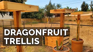 How to Build a Drągon Fruit Trellis and Plant Your First Dragon Fruit Cutting