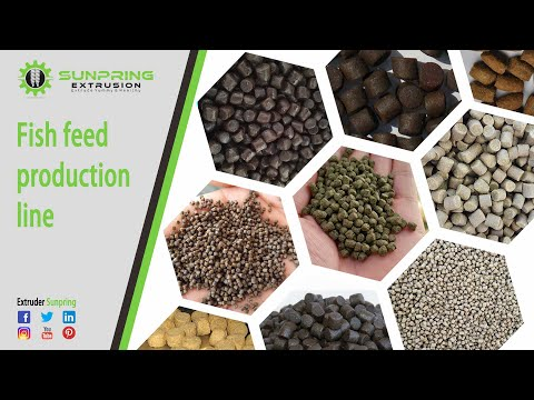 High Protein Content Fish Feed Production Line/fish Feed Production Line