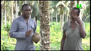 AYEKOO: Time with coconut farmers in Ghana