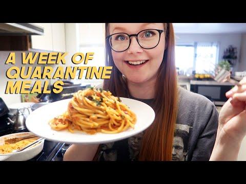 a *realistic* week of quarantine meals   vegetarian