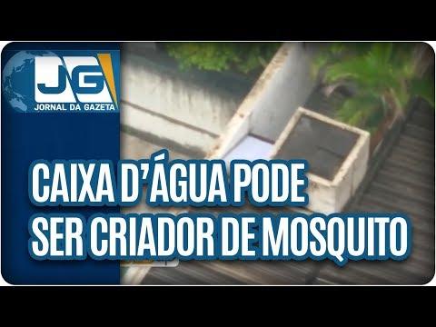 Caixa d'água pode ser criador de mosquito na ZO