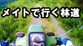 原付きで林道ツーリング! 【タウンメイト】