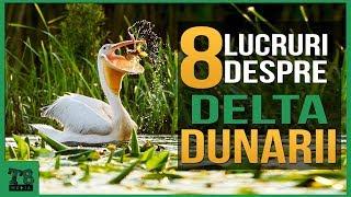 8 Lucruri interesante despre Delta Dunarii