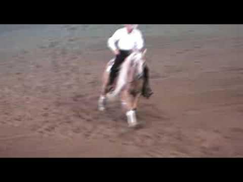 FEI World Reining Championship 2008, #6 Pete Kyle ...