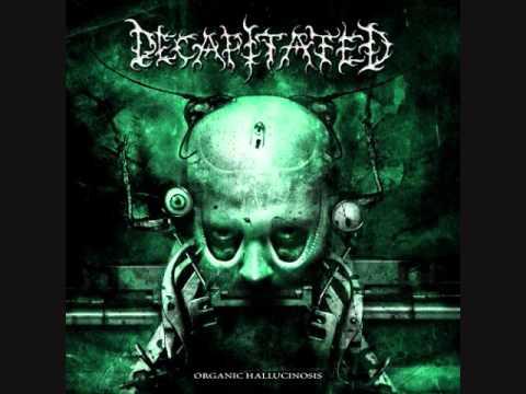 Decapitated - Flash Black - Organic Hallucinosis 2006
