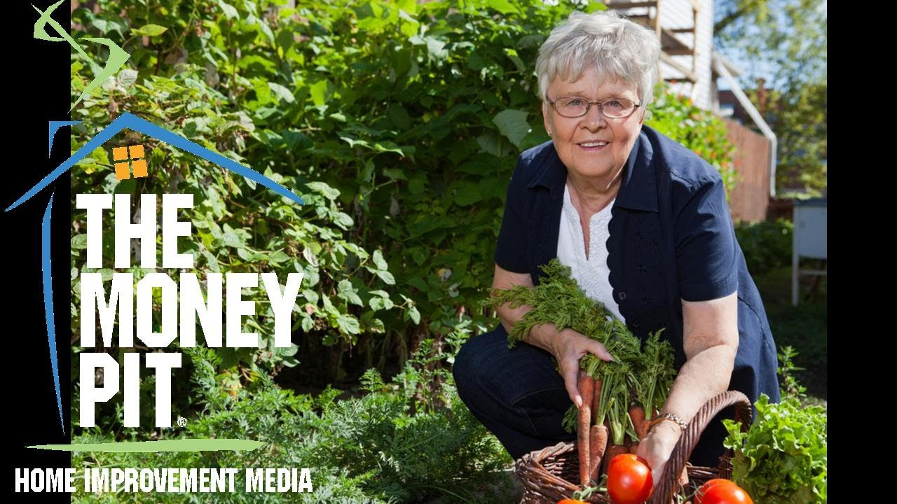 Great Garden Ideas For Early Summer Planting The Money Pit