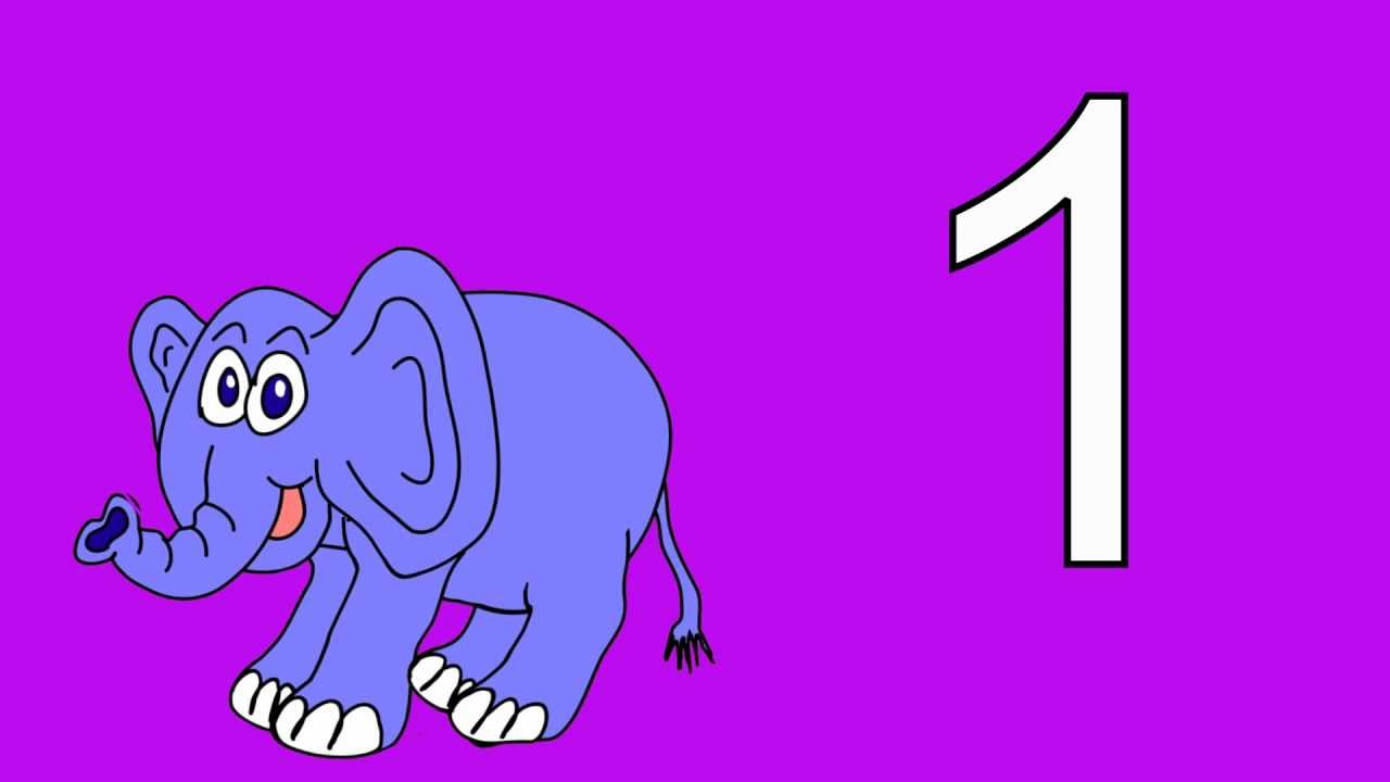 Animal Numbers 1 to 5: Count the Animal Numbers 1 to 5 Stories for Children  Books Edu Early Learning - YouTube