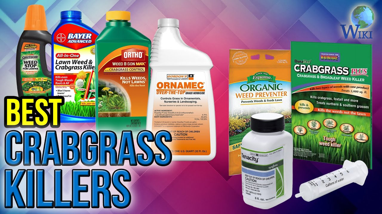 8 Best Crabgrass Killers 2017