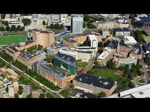 Short review of  Northeastern University