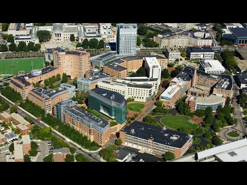 Short review of  Northeastern University
